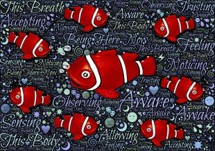 fish-998553_960_720